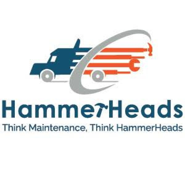 Hammerheads logo